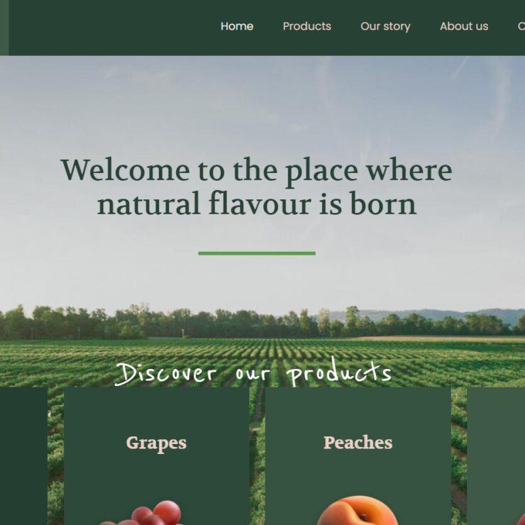 Betheme farm